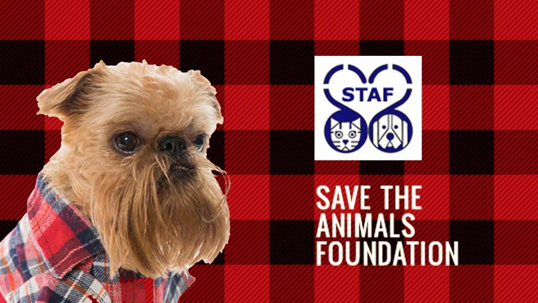 Channel Your Flannel to Benefit Save the Animals Foundation